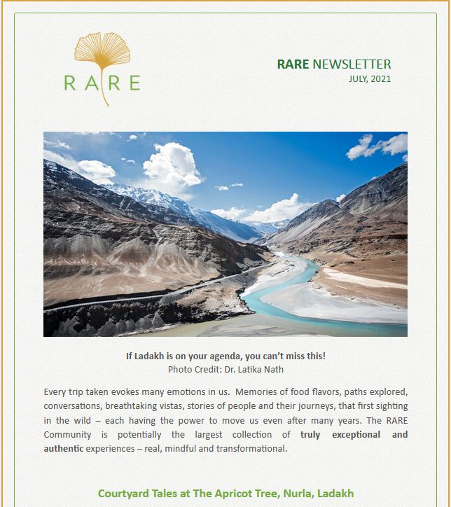 RARE Newsletter | Vol 39 | A Conscious Tapping Into Our Senses